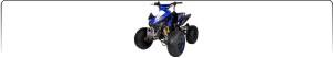 Midi Quad 110cc-125cc-150cc
